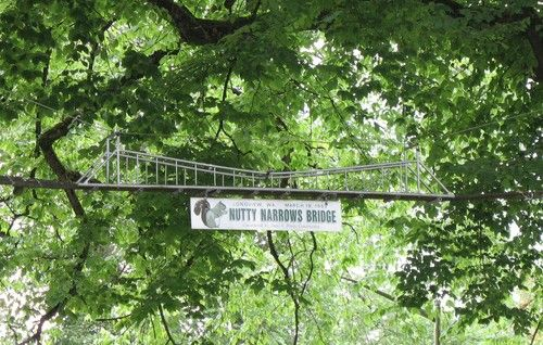 Image result for nutty narrows bridge