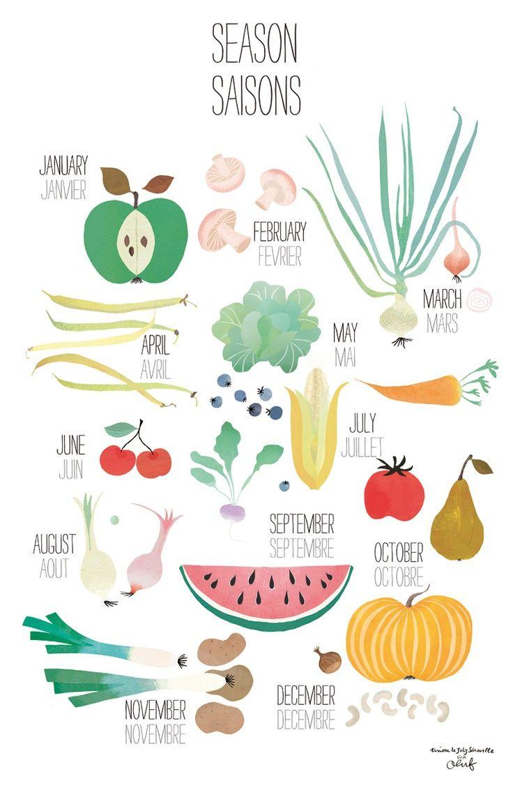 Food manger des fruits et l gumes de saison a little piece of illustrations pinterest - Fruit et legume de saison ...