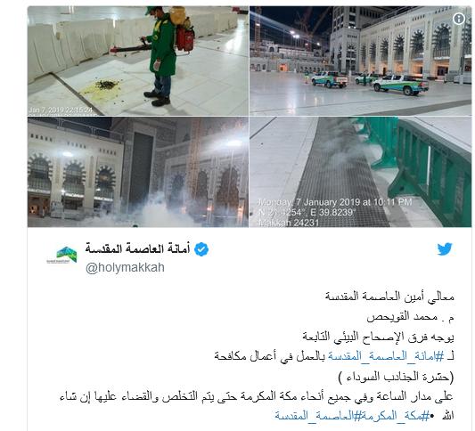 لماذا هاجمت صراصير الليل الحرم المكي بالمملكة العربية السعودية فيديو Structures