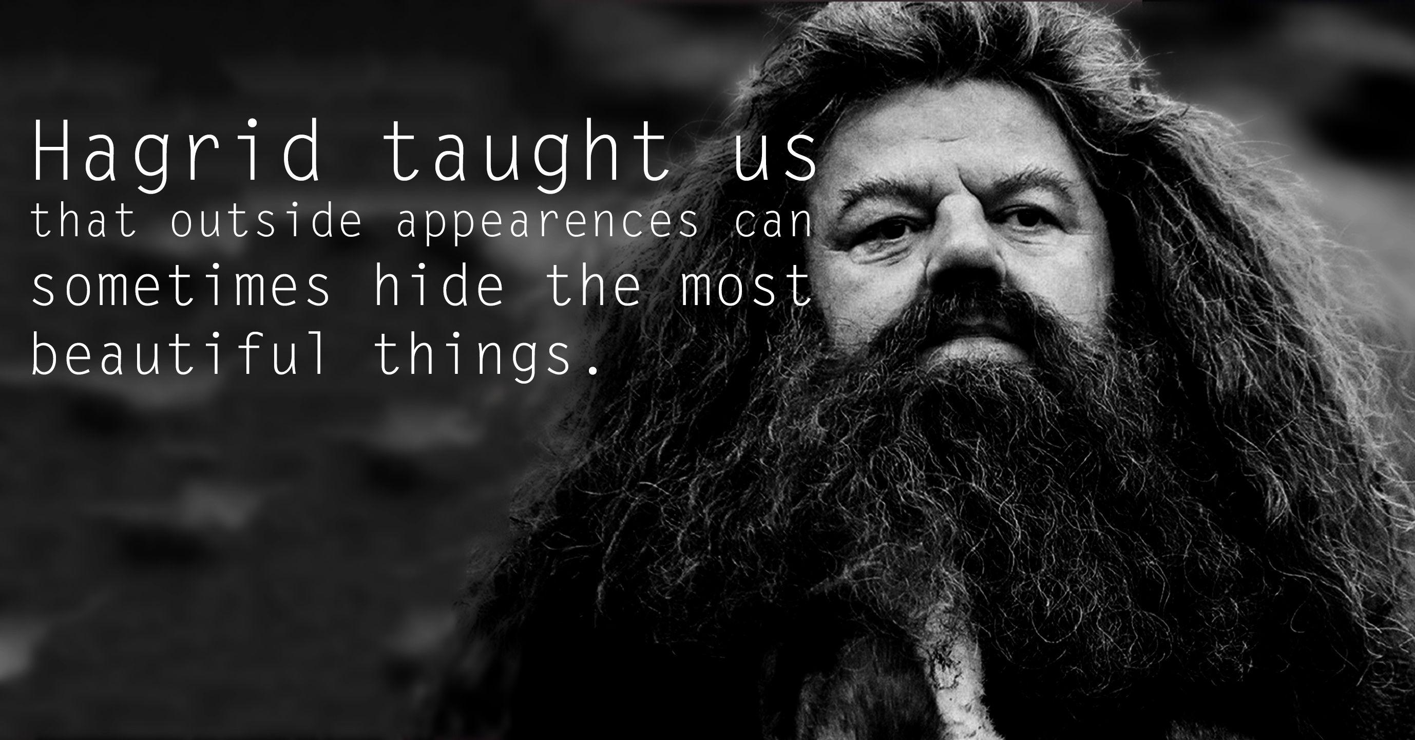hagrid stuff | hagrid-see-the-30-things-that-harry-potter-taught-us.jpg