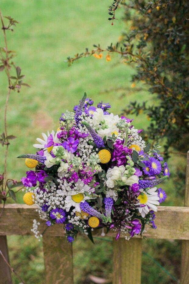 Wild flower bouquets, daisy, Veronica , crespida, stock