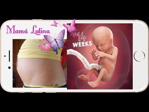 c40b900e6 Mama Latina - YouTube Mama Latina