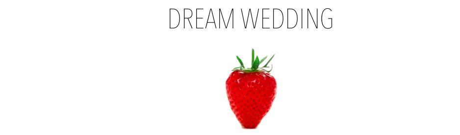 dream wedding cover 1960 chica fresa