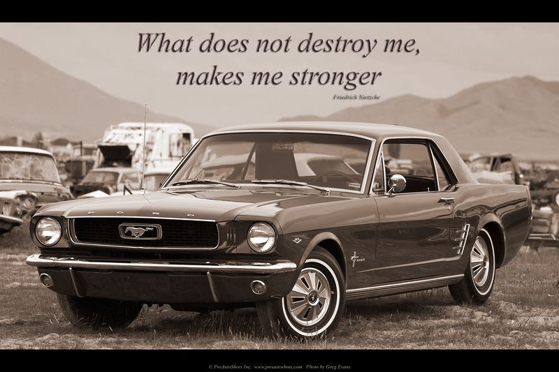 I Dont Care Its A Mustang Its Purdy Cool Mustang Quotes Ford