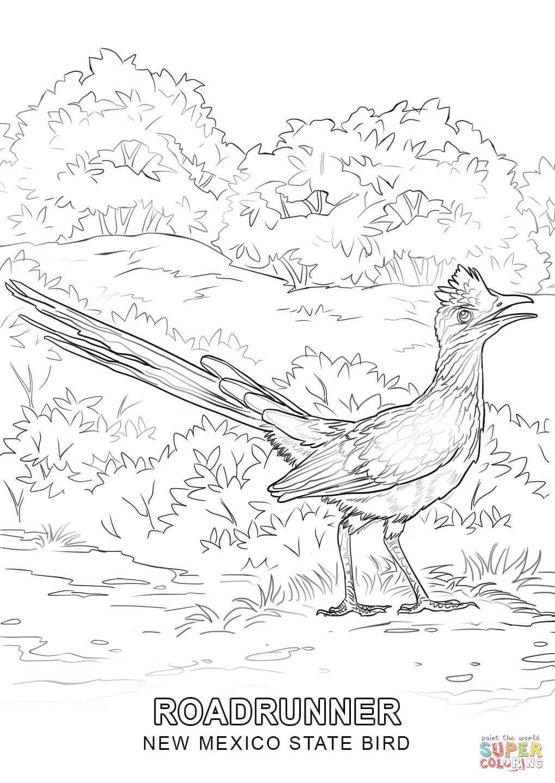 New Mexico State Bird Coloring Page Jpg 1020 1440 Kolorowanki