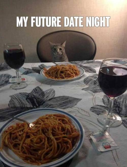 Cat My future date night Spaghetti dinner