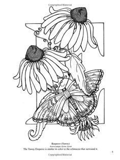 Dover Coloring Book Butterfly Alphabet Google Search Coloring Books Alphabet Coloring Alphabet Coloring Pages