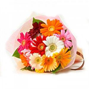 12 Multicolour Gerberas Bouquet Online Flower Delivery Flower Delivery Buy Flowers Online