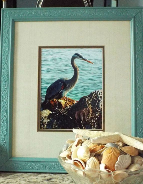 blue heron bird photography framed photography coastal decor beach decor sea