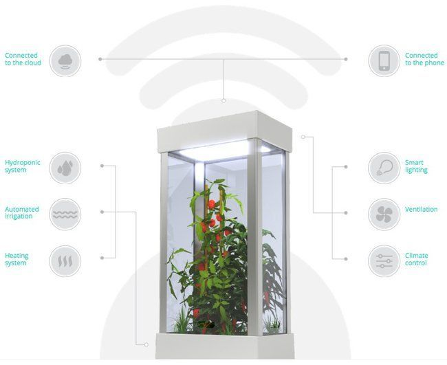 This Automated Hydroponic Growing System Is Like A Tardis 400 x 300
