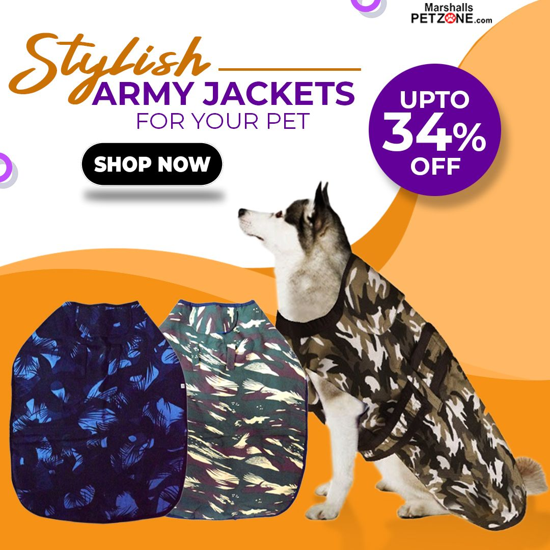 Stylish army jackets for pets up to 34off winter dog