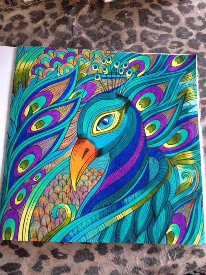 Pavao Livro De Colorir Por Karoline Moreira Livro De Colorir
