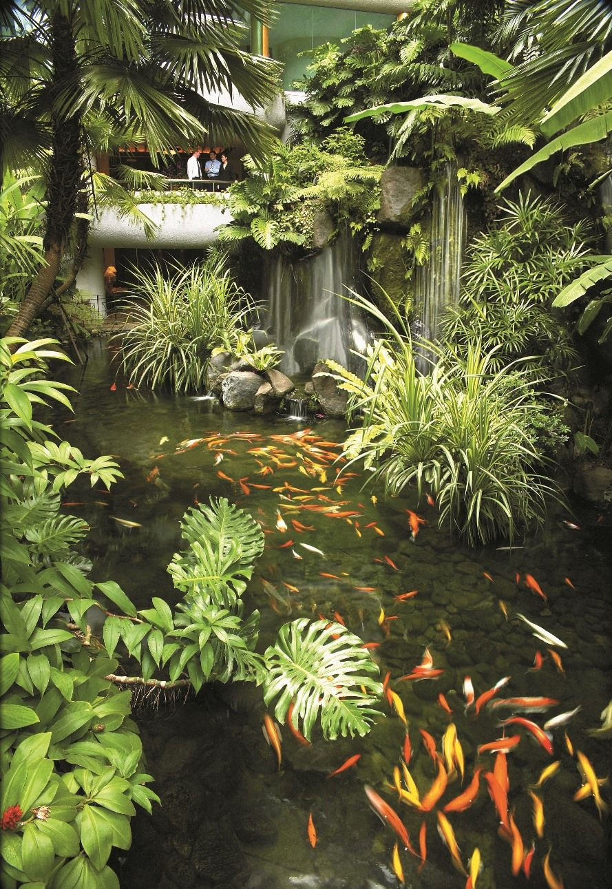 Where The City Disappears A Sanctuary Arises At Shangri La Hotel Singapore Garden Pond Design Tropical Garden Design Backyard Water Feature