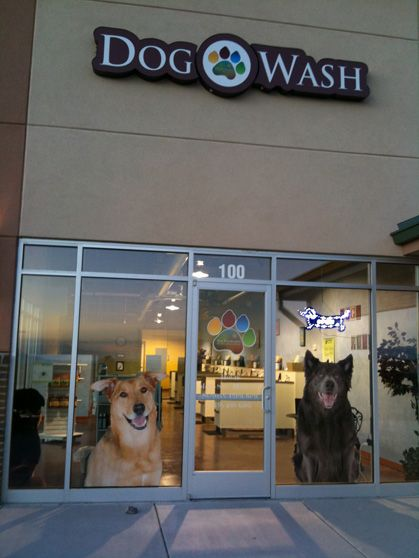 Our Storefront Looks Comfy Right Dog Wash Holistic Dog Food Dogs