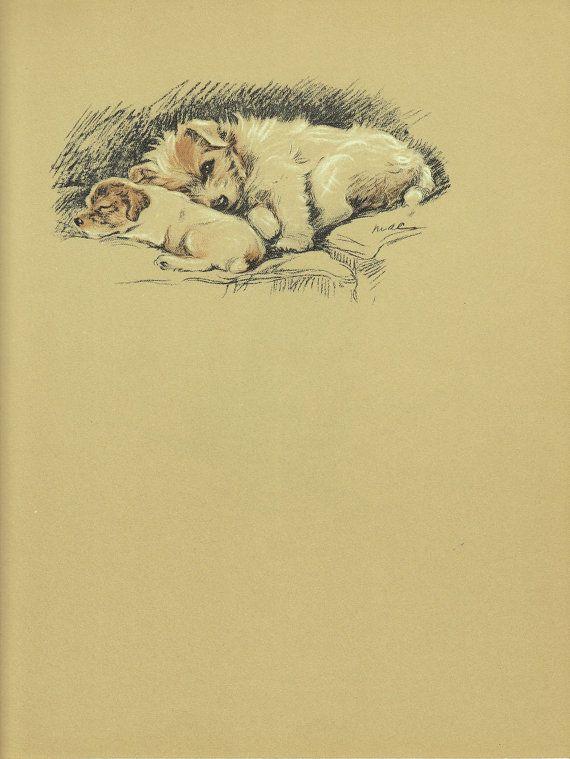 Antique Puppy Print, terrier Dog PRint, Lucy Dawson Wall Art Print ...