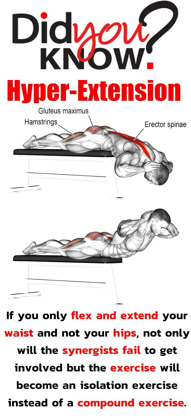 Get A Seriously Sculpted Strong Back With This Workout Comprising Of Just 5 Exercises #strengtheningexercises