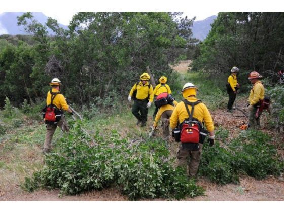 Firefighters cut brush surrounding the Child Development Center at the Air Force Academy on Wednesday, June 27, 2012.