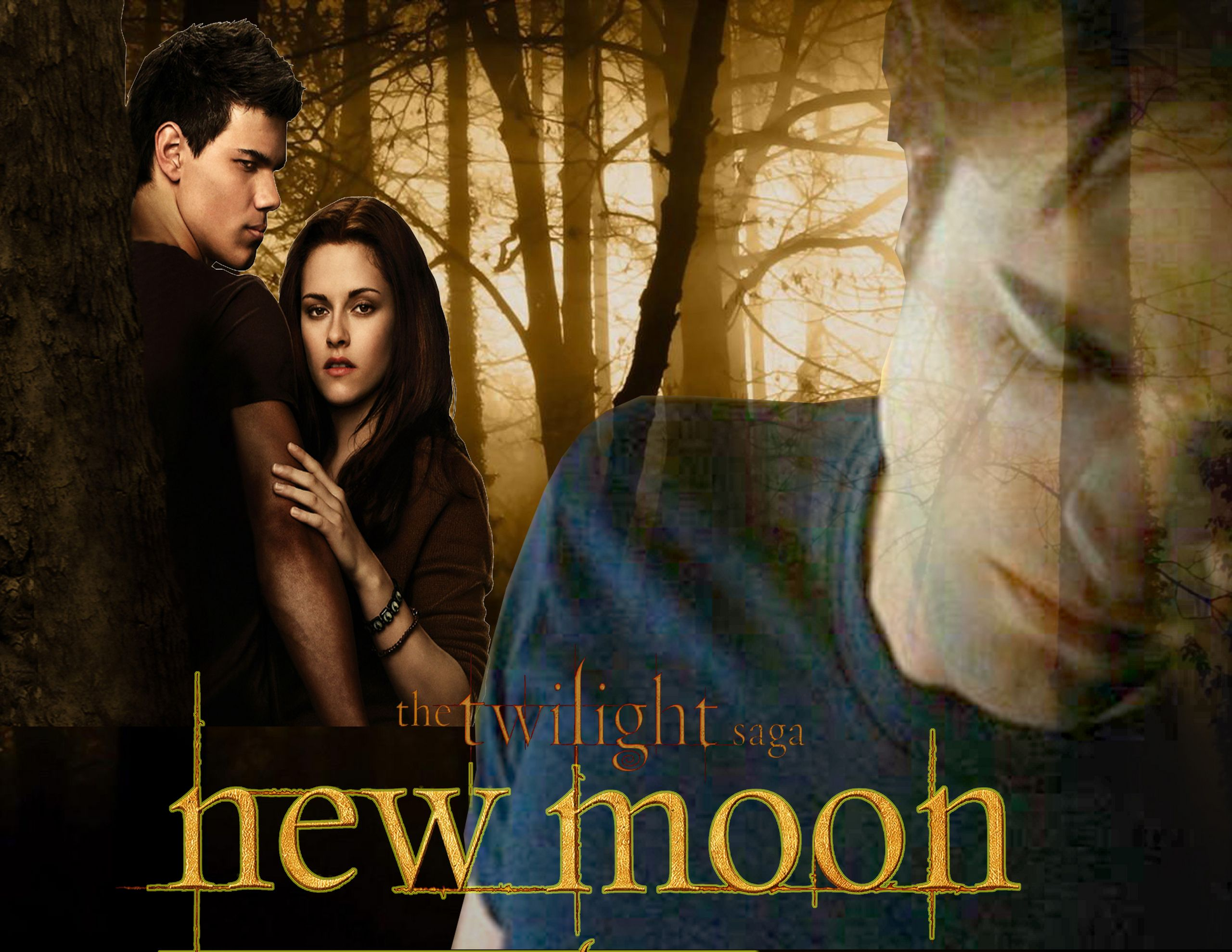 New Moon Movie Images New Moon Fanart Hd Wallpaper And Background