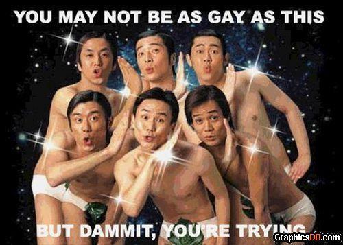 Funny gay pics