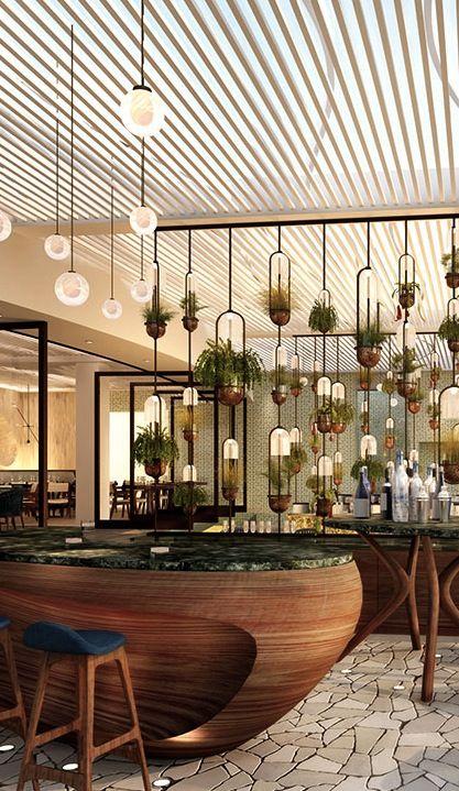 Plantas colgadas frente al lavabo cocina lobby hoteles for Mobiliario cocina restaurante