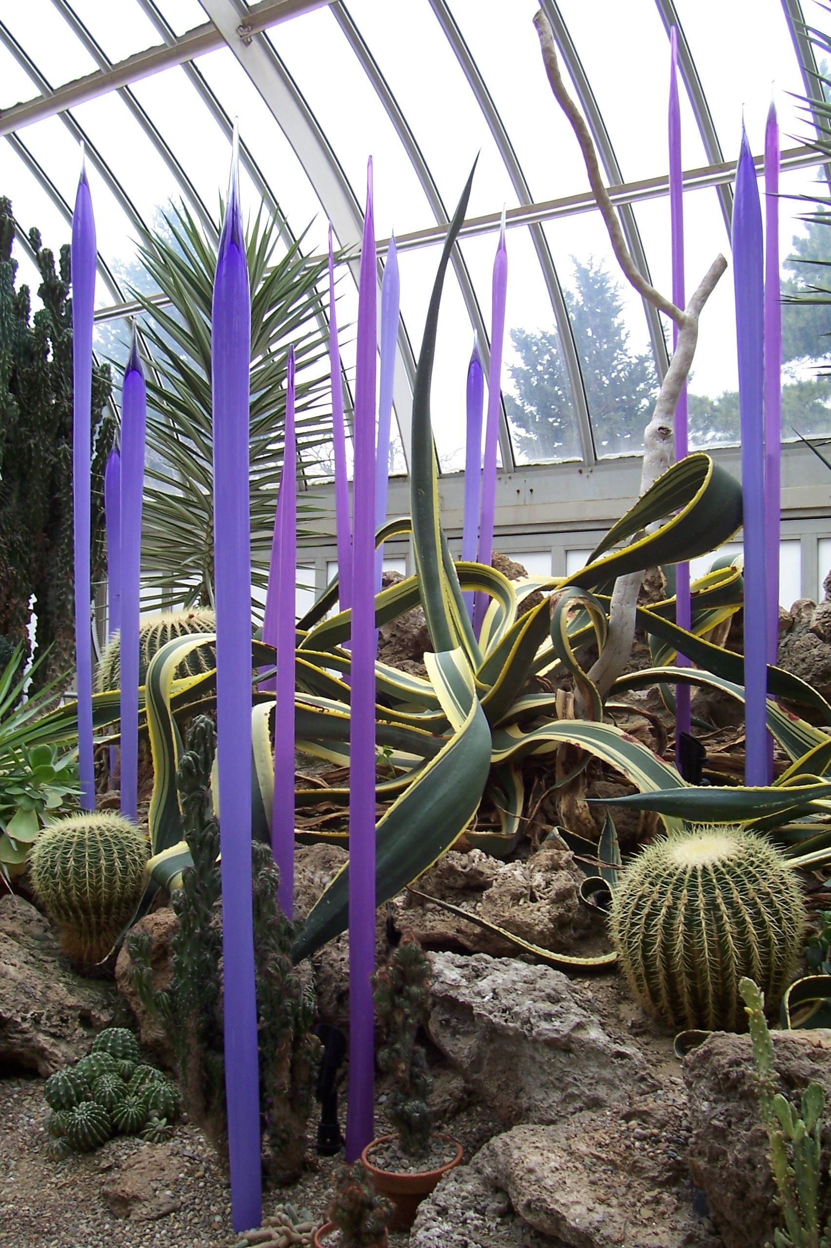 Chahuli glass show at phipps conservatory in 2008