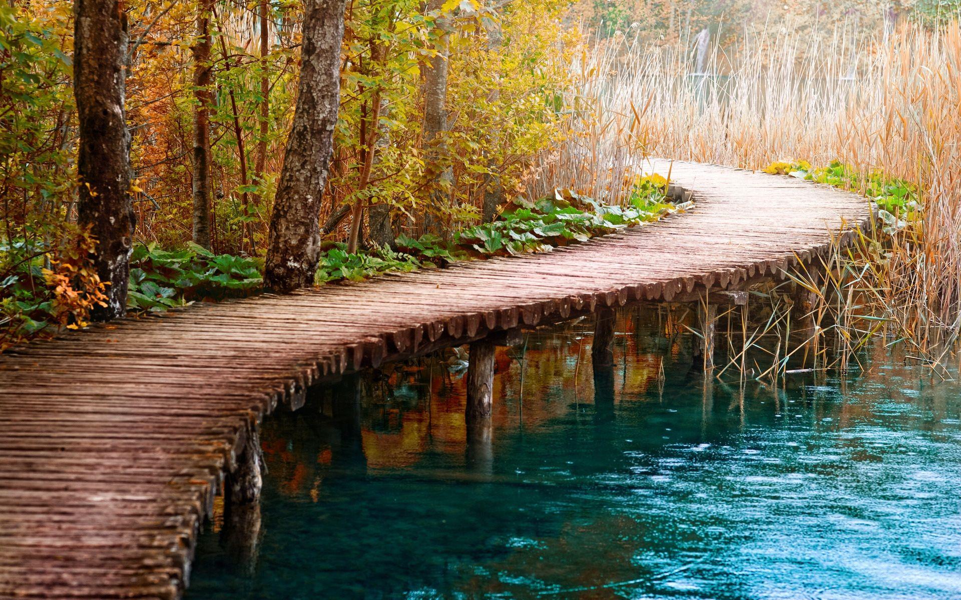 wooden bridge wallpaper - photo #12