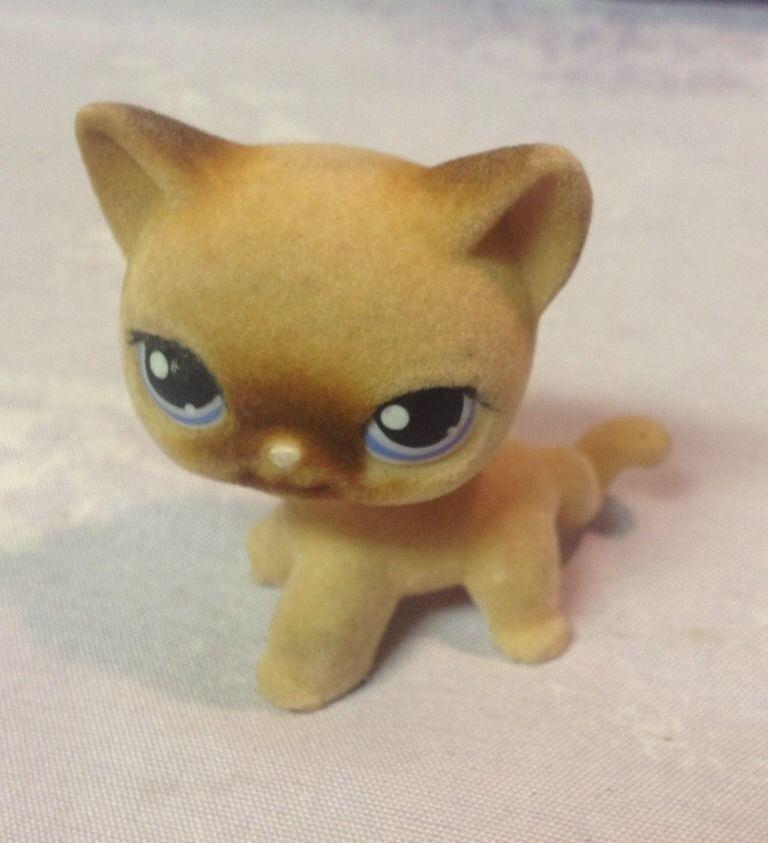 LITTLEST PET SHOP Fuzzy Furry Cat #318 Tan Brown Siamese Blue Eyes #Hasbro