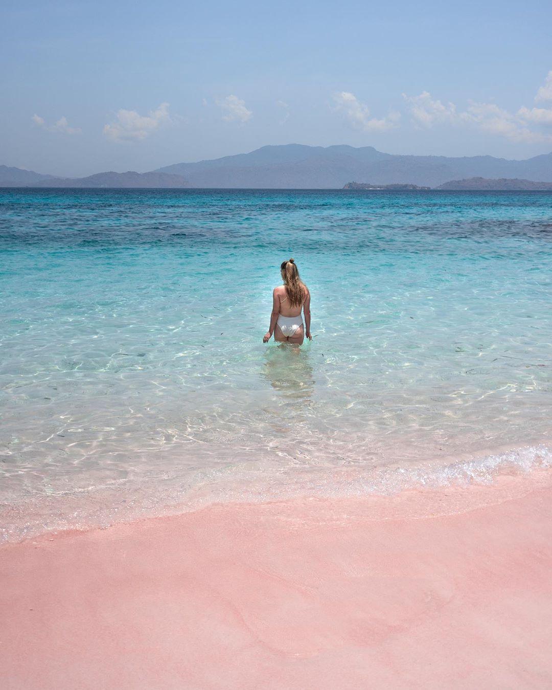 Pink Beach Komodo National Park Flores Island Indonesia Komodo National Park Pink Beach Beach