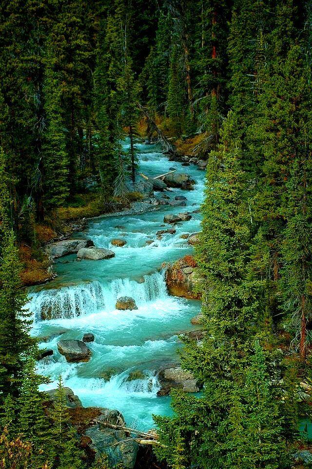 Photo of Jasper national park,Alberta Canada.