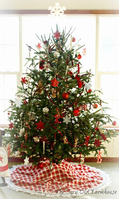 Pin By Lauren Fitzpatrick On Trees And Bushes Types Of Christmas Trees Real Christmas Tree Christmas Tree Decorations