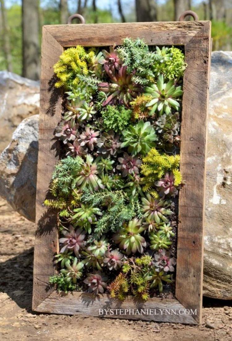 25 unique wood succulent planter ideas succulent wall