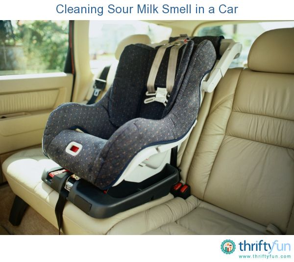 How To Get Rid Of Sour Milk Smell In Couch