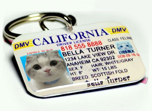 Dog Tag Pet Tag Custom Name Tag California Driver License by ID4Pet. $25.00, via Etsy.