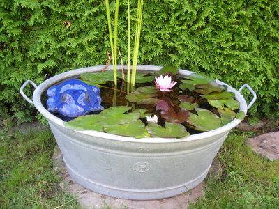 mini teich 1 wassergarten in the garden pinterest gardens. Black Bedroom Furniture Sets. Home Design Ideas