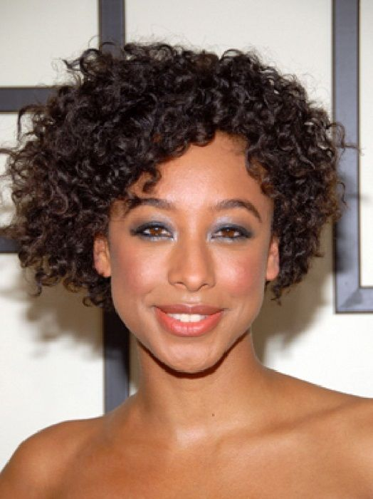 Short Natural Curly Hairstyles For Black Women Hair 2013 Short