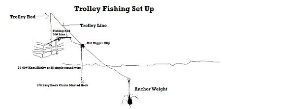 Saltwater fishing rigs beginners google search rigs for Saltwater fishing gear for beginners