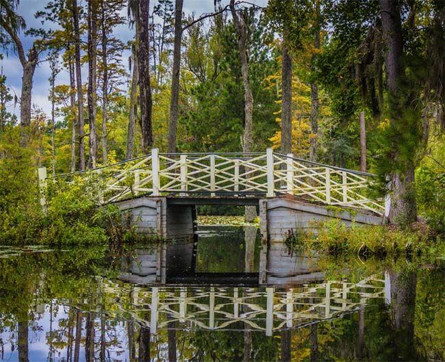 7e3293e04404db3b0a649df5c752ad12 - Magnolia Plantation And Gardens Charleston Sc 29414