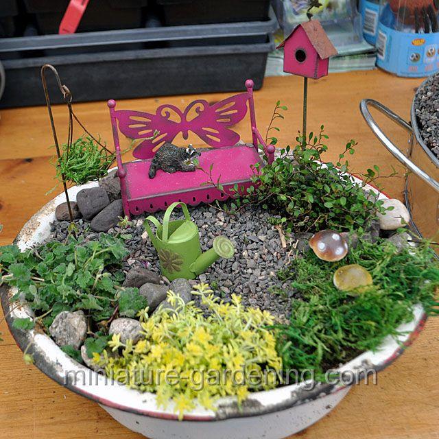 Mini Garden In A Basin Fairygarden Fairyhouses Fairy Garden Containers Miniature Garden Miniature Trees