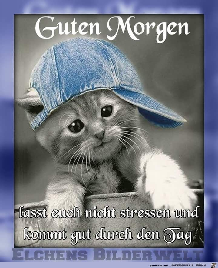 Pin Von Sofia Auf καλημερα Guten Morgen Witzig Witzige