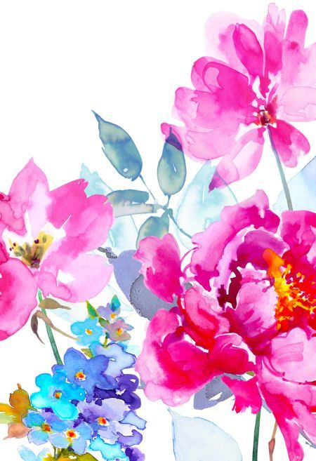 Explore Flower Backgrounds, Flower Wallpaper, and more!