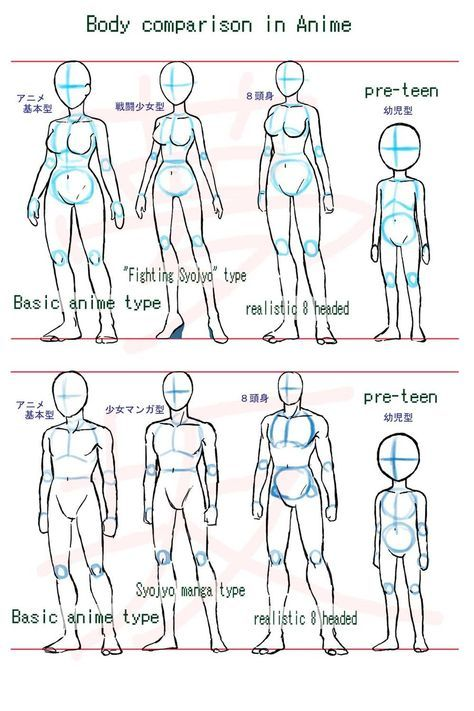 Female Body Drawing Reference Anime