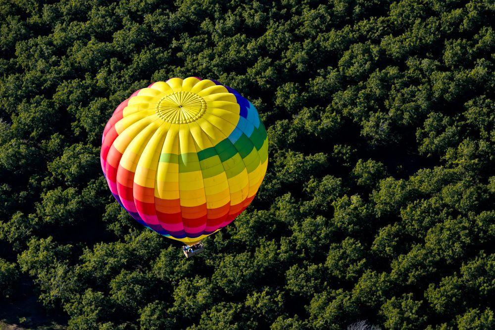 Wallpaper Computer Free Napa Valley Hot Air Balloons Rides