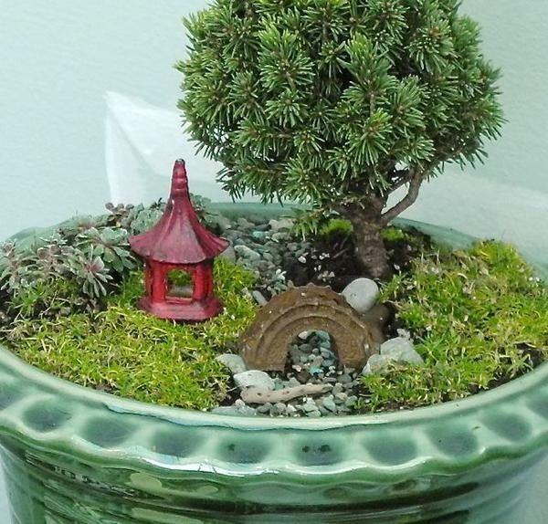 Garden Art The Mini Garden Guru Your Miniature Garden Source Miniature Garden Miniature Zen Garden Northwest Flowers