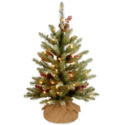 Image Of National Tree 2 Foot Dunhill Fir Pre Lit Burlap Artificial Christmas Tree With Cle Fir Christmas Tree Pre Lit Christmas Tree Artificial Christmas Tree