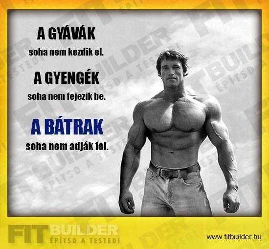 bodybuilding motivációs idézetek Pin by Katalin Nagy on motivation   Arnold schwarzenegger quotes