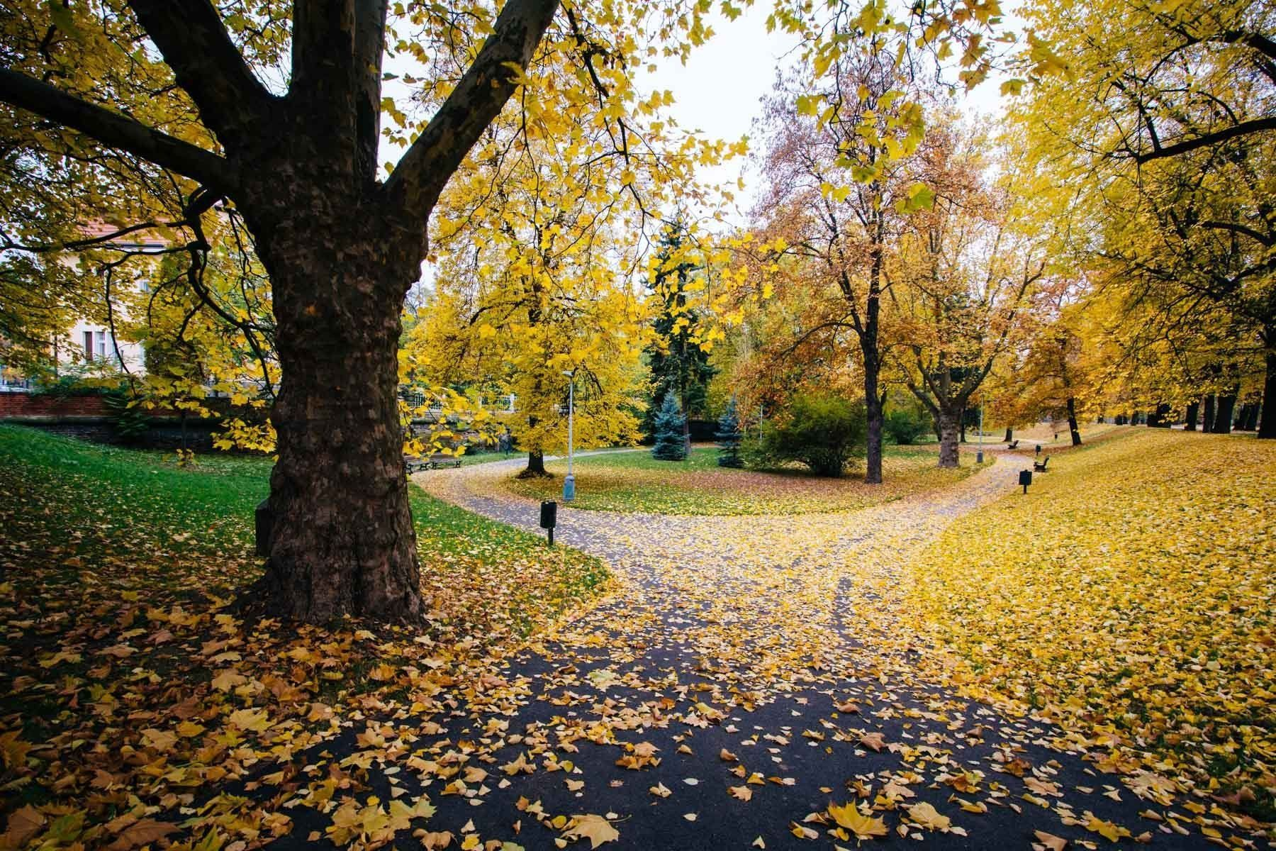 Autumn color and walkway at Letna Park, in Prague, Czech Republic ...