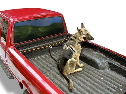 Kurgo K9 Truck Tether For More Information Visit Image Link Note It Is Affiliate Link To Amazon Dogsbed Dog Car Seat Cover Dog Carrier Dog Transport