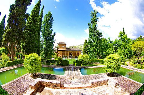 Grenade - Granada 352  les jardins de l' Alhambra