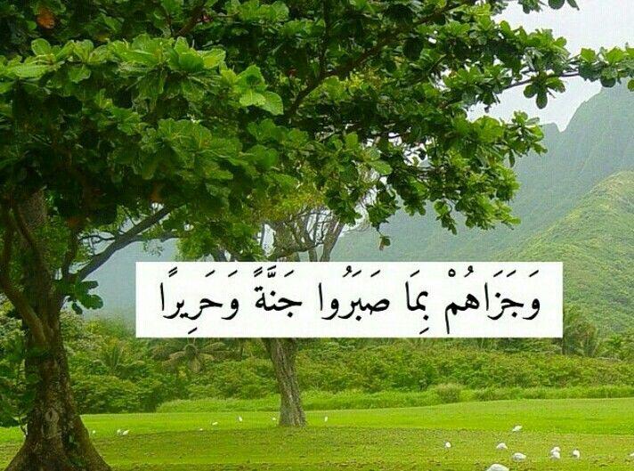 Pin By زخات المطر On ايه وتفسير Light Box Noble Quran Light