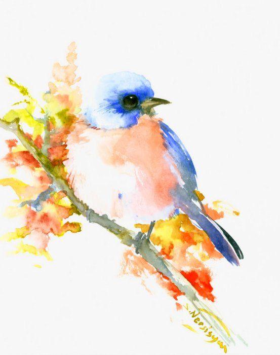 Eastern Bluebird 10 X 8 Original One Of A Kind Watercolor Painting Watercolor Bird Tattoo Watercolor Bird Bird Illustration